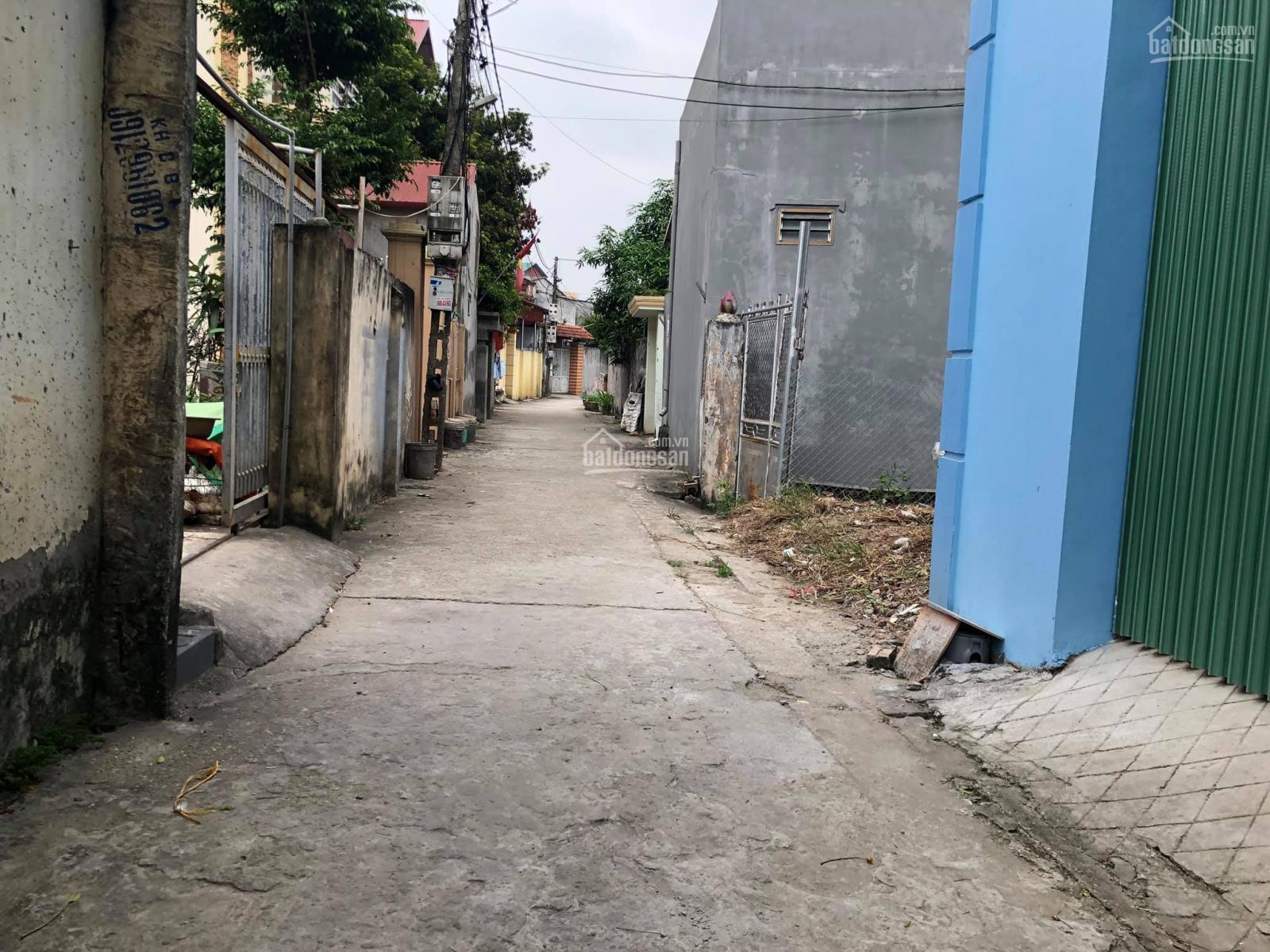 Cần bán nhanh lô đất 52m2 tại Thuận Tốn, Đa Tốn, Gia Lâm, Hà Nội.